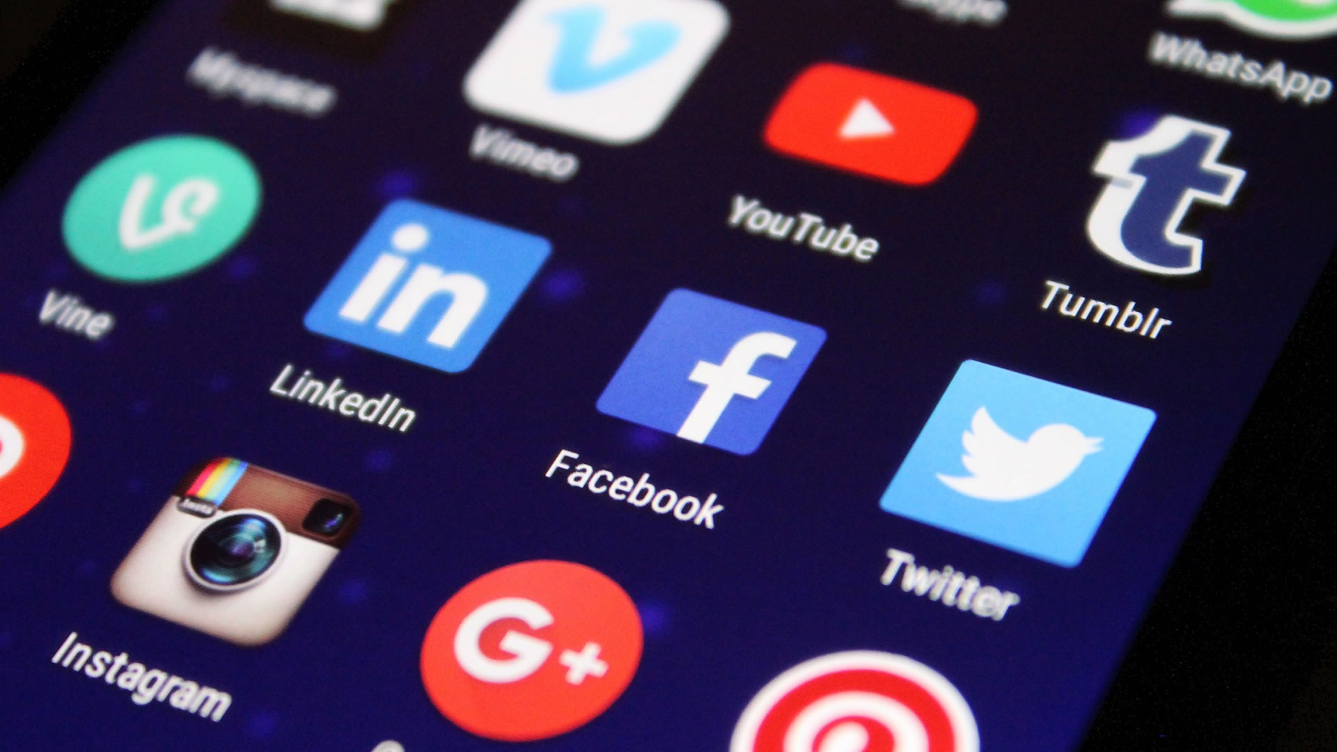 Social Media BizzWeb.pl